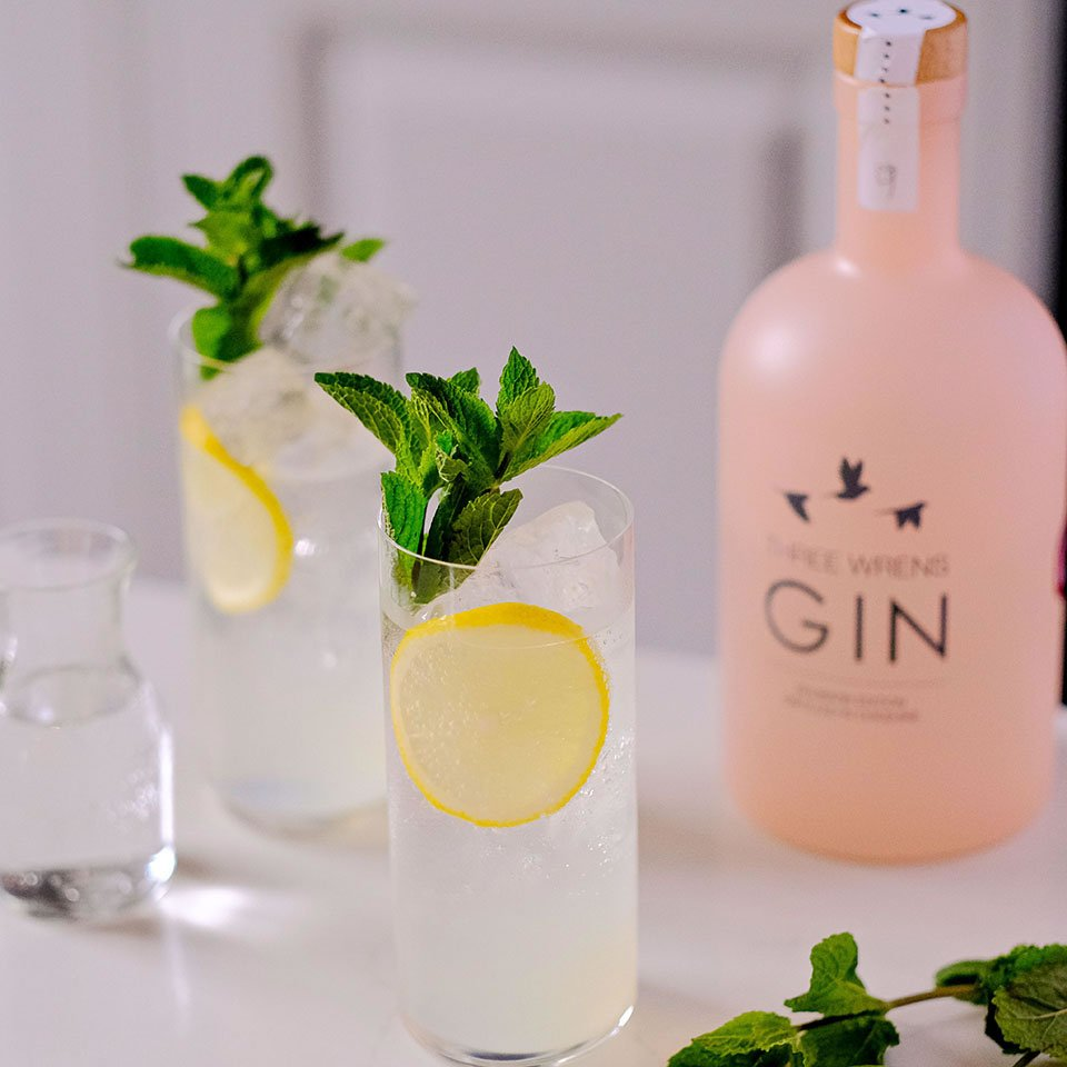 tom collins gin cocktail