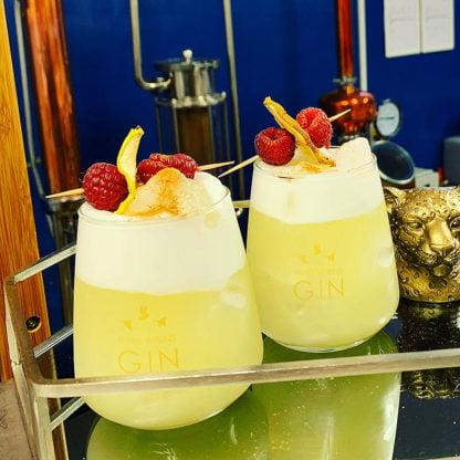 2 gin glasses garnished