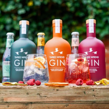 gin gift box apple orange raspberry