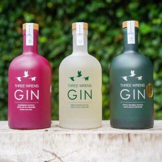 3 gin bottles